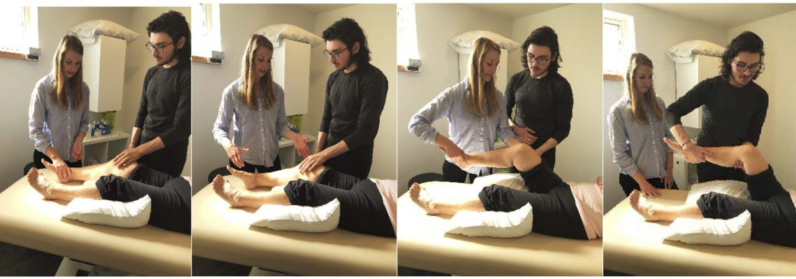 What motivates U of T Recent Physical Therapy Grads to offer internships to students?